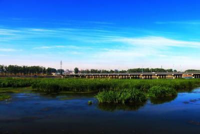 泗水落实济宁市经济工作会议 全力推动经济高质量发展