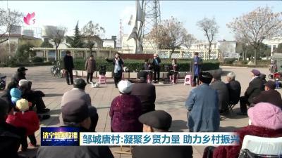 【领航】邹城唐村:凝聚乡贤力量  助力乡村振兴