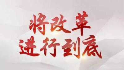 """政府機構改革后 """"假公章""""能開""""真證明""""?"""