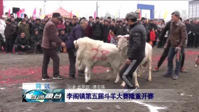 鱼台:李阁镇第五届斗羊大赛隆重开赛