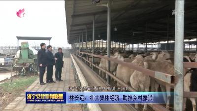 林长运:壮大集体经济 助推乡村振兴