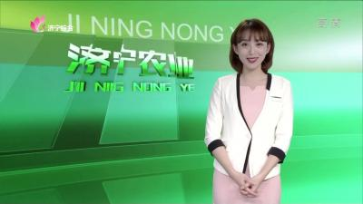 济宁农业——20191231