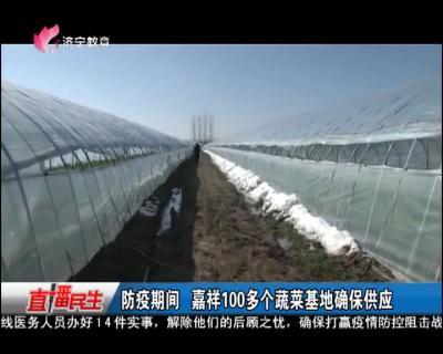 防疫期間 嘉祥100多個蔬菜基地確保供應