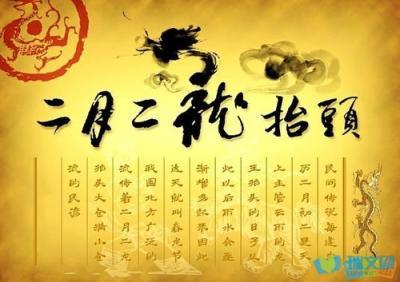 """望岳谈 """"二月二""""别样春耕,看田间""""新式农活"""",""""帅""""到你了吗?"""