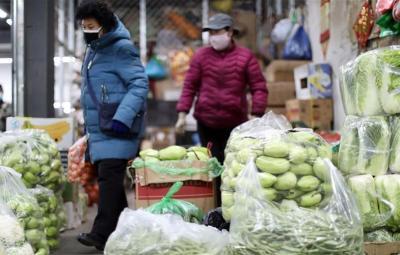 """稳产保供 济宁市""""菜篮子""""产品生产供应总体稳定"""