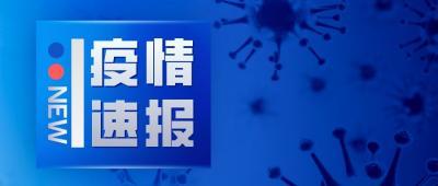疫情通報|?2月16日0至12時濟寧無新增確診病例 無新增疑似病例