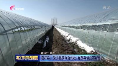 嘉祥縣:黨支部領辦合作社 鮮蔬菜供應不斷檔