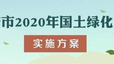 一图读懂|济宁市2020年国土绿化工作实施方案