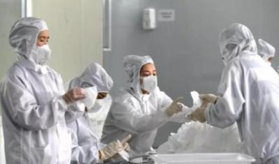 新華社評論員:著力健全國家公共衛生應急管理體系
