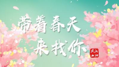 """帶著春天來找你!山東、重慶等九省市聯動以花之名,為武漢""""櫻花君""""加油"""