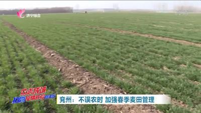 兖州:不误农时 加强春季麦田管理