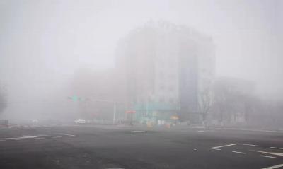 雨后山东大部有雾  济南、青岛、淄博等地已发大雾预警