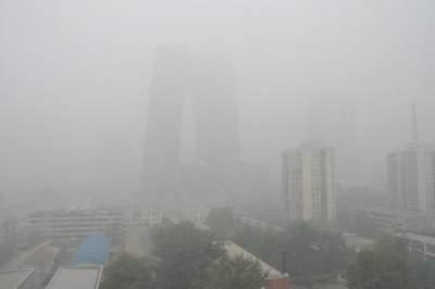 山东多地大雾持续 27-28日再迎大范围雨雪天气