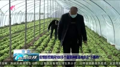 """嘉祥:疫情防控期间100多个蔬菜种植基地供应""""不断档"""""""