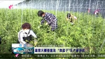 """微山:蔬菜大棚春意濃 """"菜籃子""""生產保供應"""