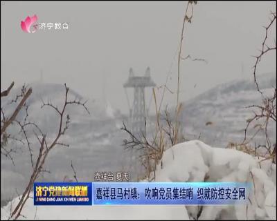 嘉祥县马村镇:吹响党员集结哨 织就防控安全网