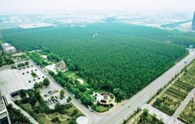 """泗水:30年不間斷譜寫""""綠色家園""""新篇章"""