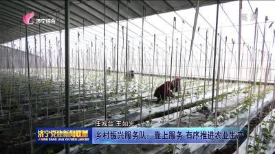 乡村振兴服务队:靠上服务 有序推进农业生产