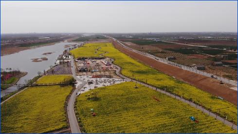 视频 | 万亩油菜花已开放 快来感受春天的气息