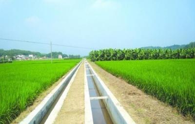 不誤農時 魚臺農業工程項目扎實推進
