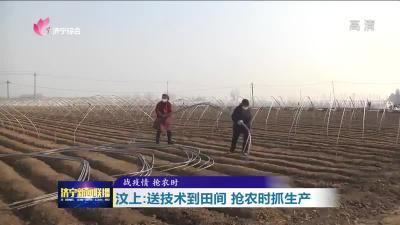 汶上200多名農技人員送技術到田間 搶農時抓生產