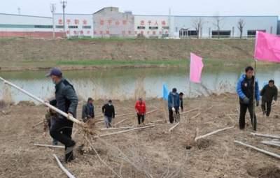 金乡:疫情防控不松劲 植树造林不误时