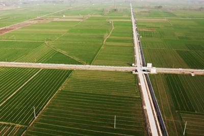 不误农时!鱼台6万亩高标准农田项目全面复工