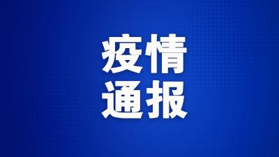 疫情通报|济宁市3月31日0时至12时新冠肺炎疫情情况