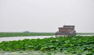 """济宁文化旅游系统""""重点攻坚"""" 推动微山湖5A创建等工作"""
