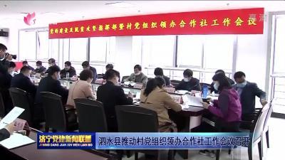 泗水县推动村党组织领办合作社网上投注彩票APP会议召开