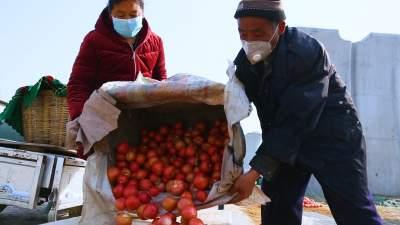 视频 | 一天交易超百万 济宁这个临时市场很红火