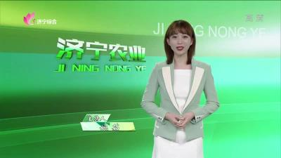 济宁农业——20200317