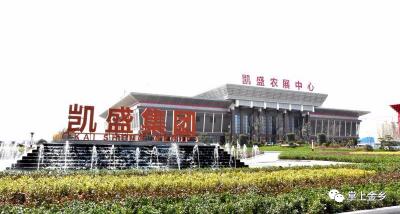 全省僅6個!金鄉凱盛農產品拍賣平臺入選山東省專題調研典型案例