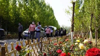 梁山:绿化造林超万亩 道路绿化112.6公里