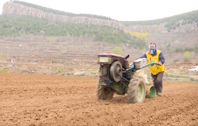 泗水縣推廣土壤熏蒸技術 土地增產又增效