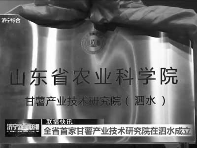 山東省首家甘薯產業技術研究院在泗水成立