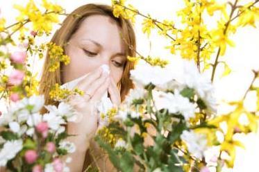 花團錦簇是花粉過敏主因?誤區!