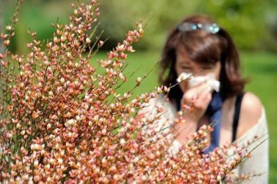 花粉、柳絮、小蟲,關于春天的冷知識了解一下