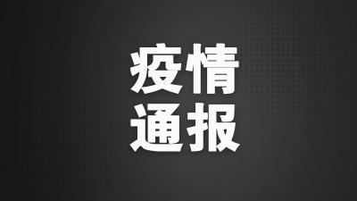 疫情通报 | 济宁市4月3日0时至24时新冠肺炎疫情情况