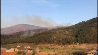 上千个煤气罐离明火不足百米!西昌森林火灾19人牺牲细节披露