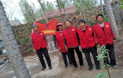 """泗水金庄镇完成732户贫困户""""清洁庭院""""创建工作"""