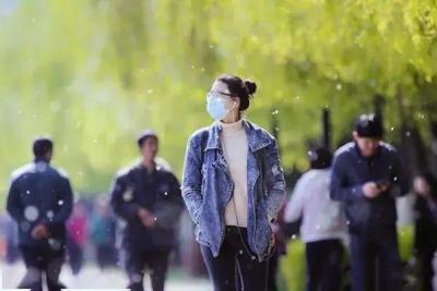 视频   无证据证明杨柳絮中有新冠病毒 飞絮季个人防护9要点