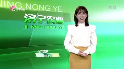 济宁农业——20200407
