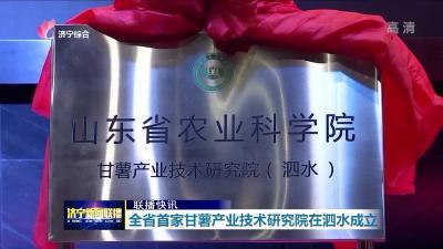 全省首家甘薯产业技术研究院在泗水成立