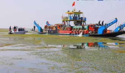 濟寧南四湖春季放流945萬余尾魚苗 助力5A景區創建