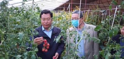 泗水县圣水峪镇产业融合发展  打造乡村振兴核心区