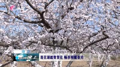 汶上:蓮花湖踏青賞花 暢享明媚春光