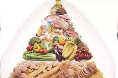 全民營養周 合理膳食免疫基石 你的日常飲食健康嗎