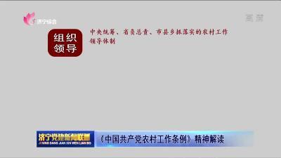 《中国共产党农村工作条例》精神解读