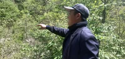 ?曹春成:一生守護一片林